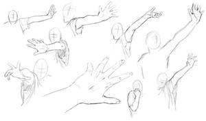 Arm + Hand Study