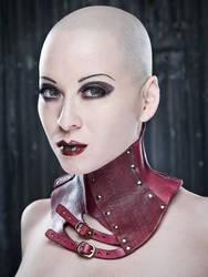 Red Acedia Posture Collar
