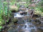 Willow Creek on Mt. Massive