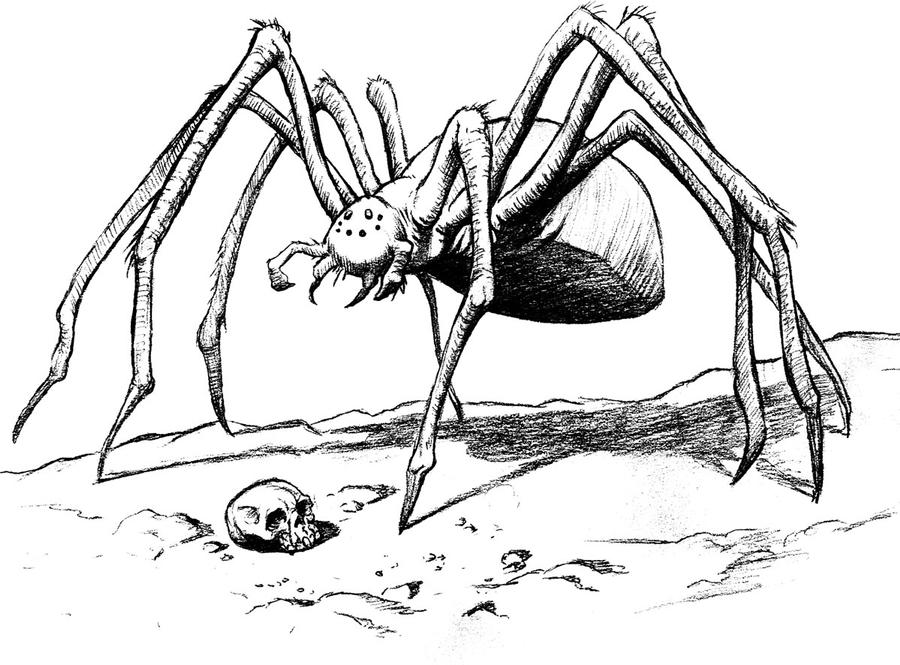 Coloring Pages Spiderman Coloring Page Spiderman Printable Spiderman Coloring Pages Picture further Spider Coloring Pages moreover Myth Giant Spider Concept Art 214815672 as well Red Back Spider Tattoo Design 2 376866628 as well Spider Silhouette By Tulvur 193471. on spiders