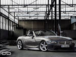 BMW Z4 for Tuning-Glub by odyar