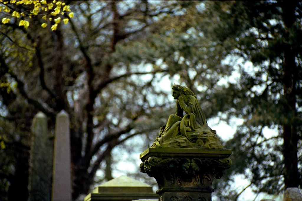 Green statue by rotellaro