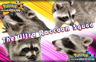 The Ultra Raccoon Squad