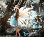 {Where Butterflies Never Die}