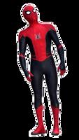 Peter Parker/ Spider-Man 13