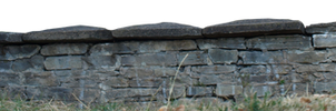 small wall and grass PNG