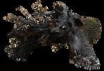 Stump PNG by dreamlikestock