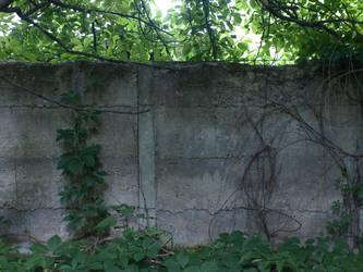 old wall 4 by dreamlikestock