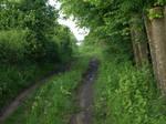 country road 9 by dreamlikestock