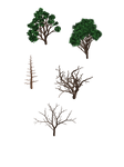 small trees 2 PNG