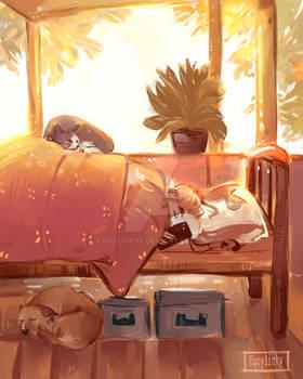 Summer naps