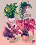 Plants everywhere