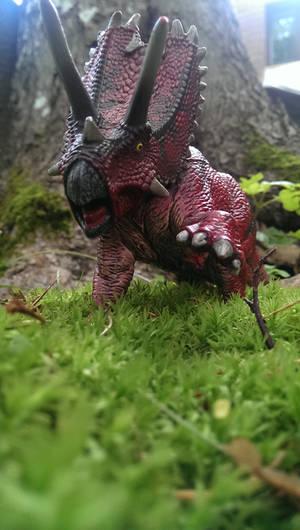 Pentaceratops is startled.