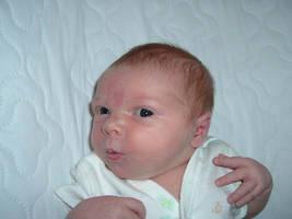 Baby Alert by Gorpo