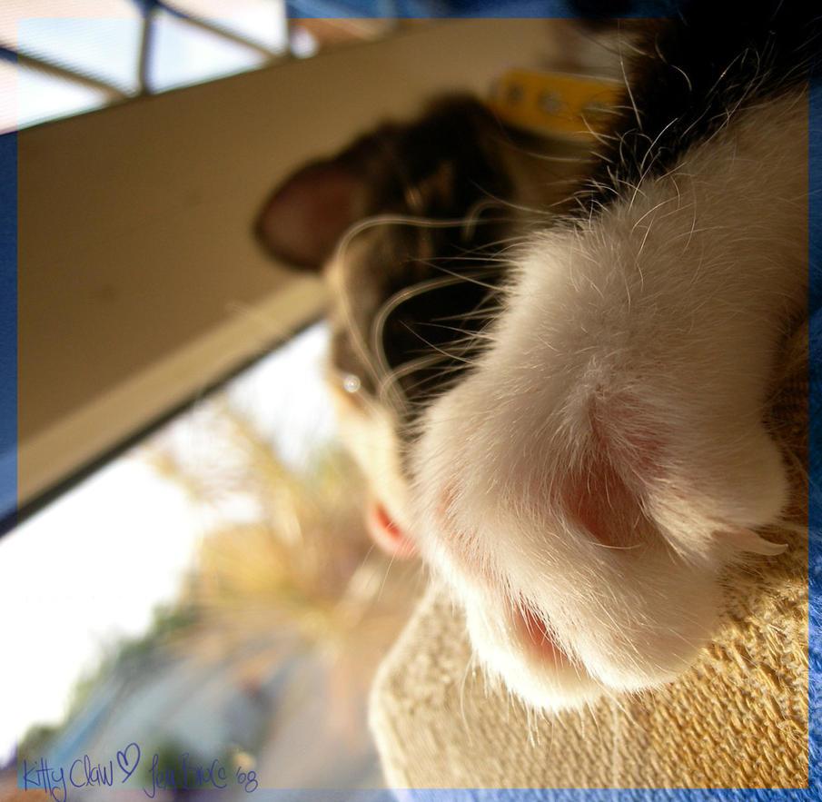+Kitty Claw+ by brucej