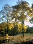 +Autumn Fairy+