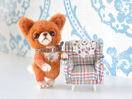 Lucky. Red Chihuahua by SulizStudio