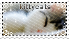 Stamp: kittycats by Peccantis