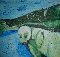 Harp Seal PreSkinning