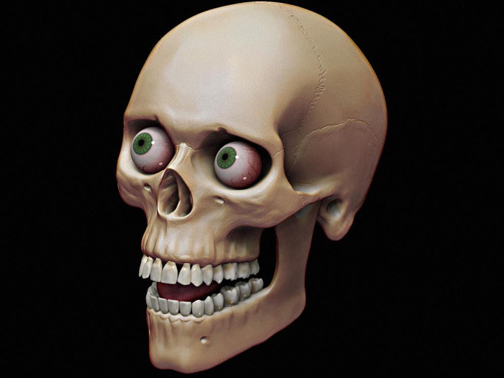 Skull Study by Vladracs