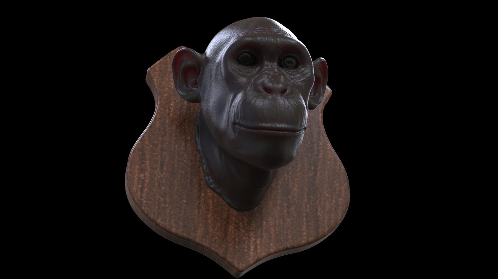 Chimpanzee Trophy! by Vladracs
