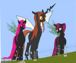 The three of us will take over the Changelings