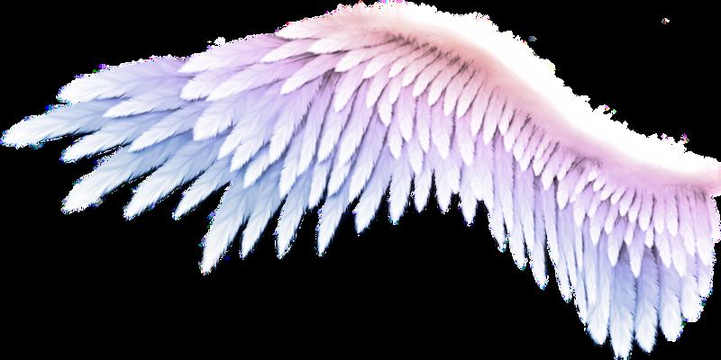 pngbarn - 2020-09-16T013807.675