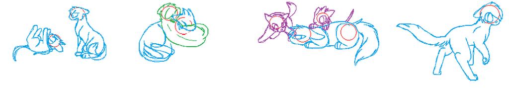 Megacat Sketches by pokemonlover417