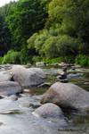 Sazava river V
