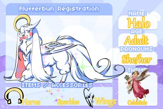 Halo Registration