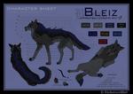 Bleiz - Character sheet
