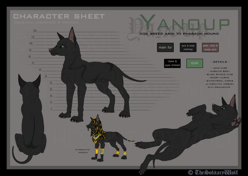 Yanoup - Character sheet