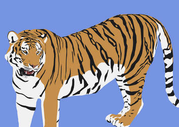Tiger at the Zoo by Readsway2much