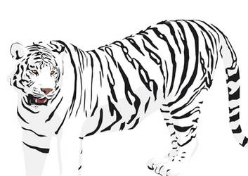 White Tiger at the Zoo by Readsway2much