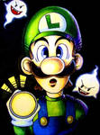 Luigi by Lenore103