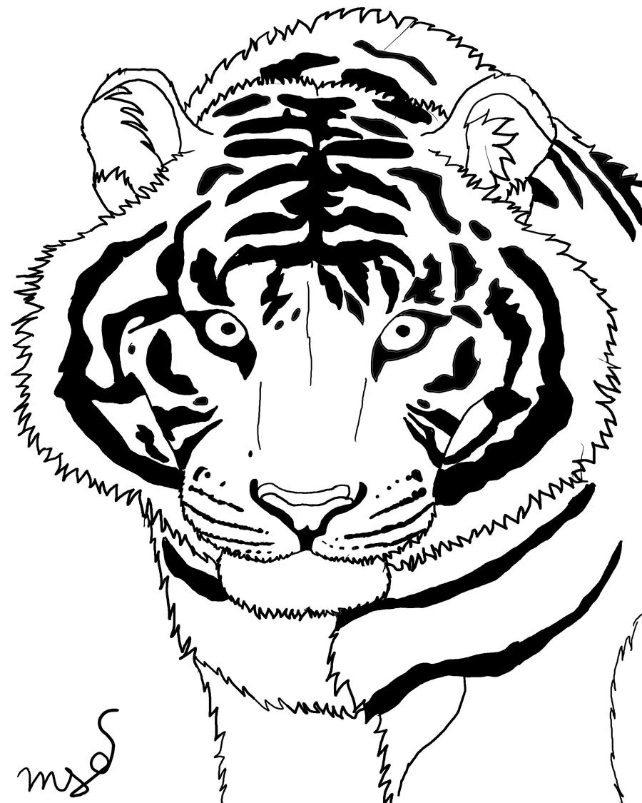 Line Drawing Tiger : Tiger line art by tallybaby on deviantart