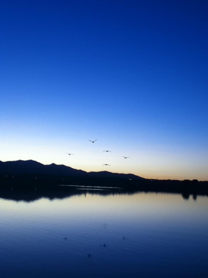 Sunset Lake by TallyBaby13