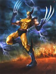Wolverine by Jaydekim