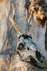Roe deer carved skull