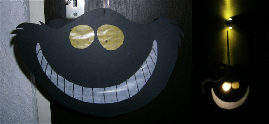 Cheshire Cat  Lantern by Fusainne