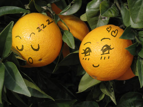 oranges...?