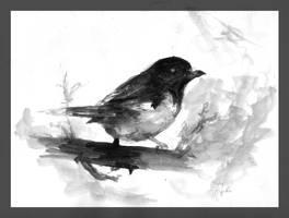 Tempera bird by pley