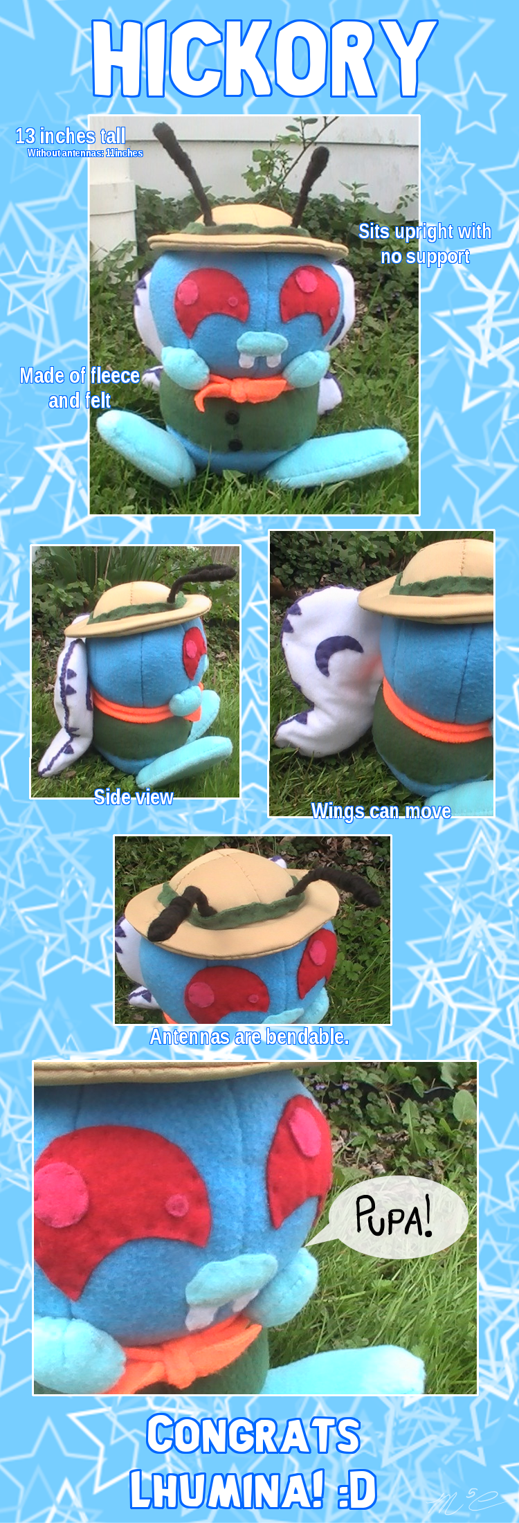 1st Place Prize: Hickory Plushie by TheGrumpyTurtle