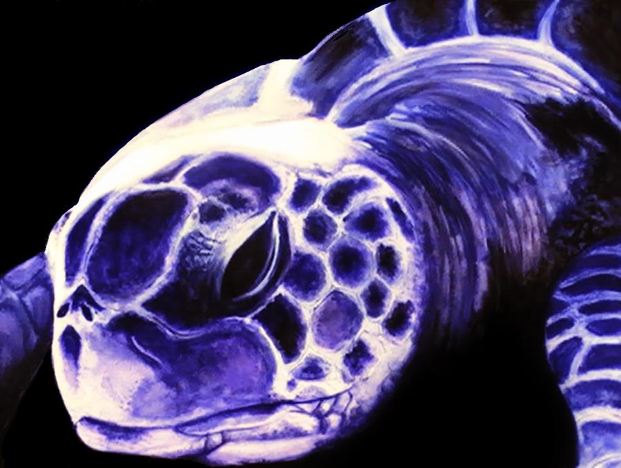 Sea Turtle by TheGrumpyTurtle