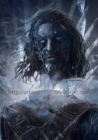 Eddard Stark by ertacaltinoz