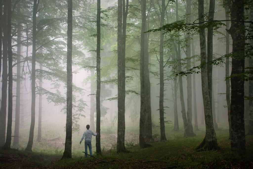 Feeling the Silence by FedericoMeuli
