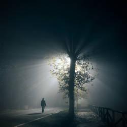 Night Dreamer by FedericoMeuli