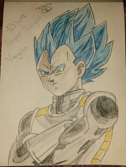 Blue Super Saiyan Vageta by demongirl222