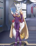 Spaceship inspection