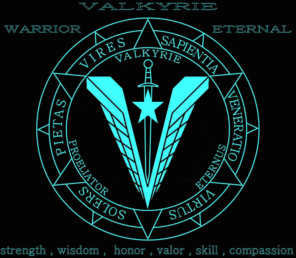 Valkyrie seal by admiraltigerclaw on deviantart valkyrie seal by admiraltigerclaw biocorpaavc